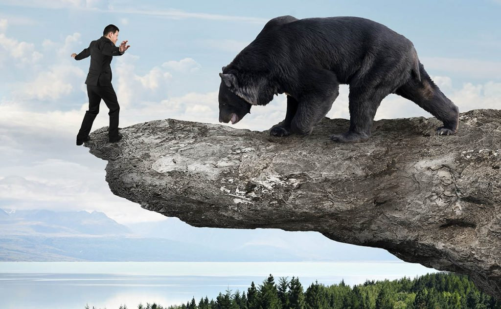 By avoiding bears you are missing a great character building opportunity